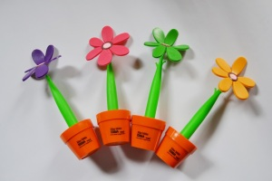 Blumenkuli